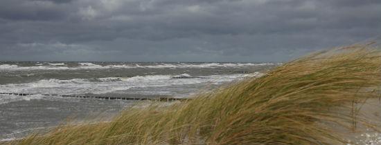 22 marca Dniem Ochrony Morza Bałtyckiego i Świat...