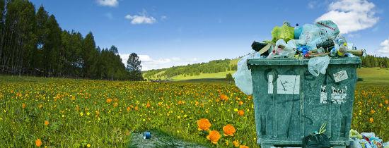 Sprzątanie świata Wojewódzki Fundusz Ochrony środowiska I